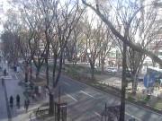 仙台 - 定禅寺街