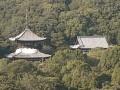 Iwade - Negoro-ji Temple