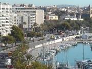 パルマ・デ・マヨルカ - 港