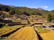 Taka - Rice Terrace