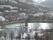 Bergen - Festplassen