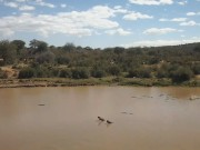 Laikipia County - Watering Hole