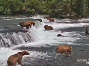 カトマイ国立公園 - ブルックス滝