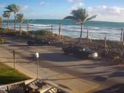 ダニアビーチ - ビーチ
