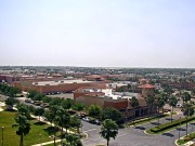 McAllen : Panoramic View