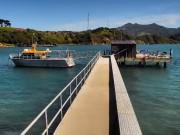 Dunedin - Wharf