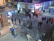 Nueva Orleans - Bourbon Street [3]