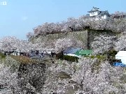 Tsuyama - Castillo de Tsuyama